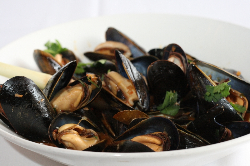 Blue Hill Bay Mussels