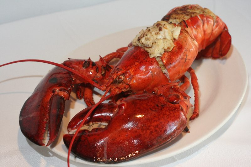 Catch 35's Annual Lobster Bash - Catch 35 seafood restaurant